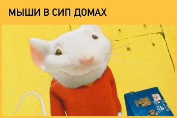 Мыши в СИП домах