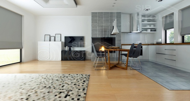 """Проект одноэтажного дома из СИП панелей с гаражом """"Малибу"""" - фото интерьера"""